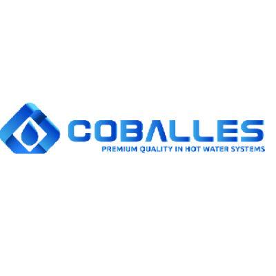 COBALLES_Mesa de trabajo 1-42