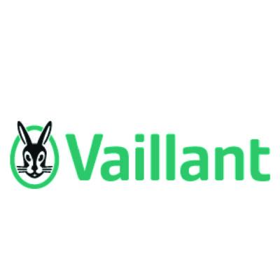 VAILLANT_Mesa de trabajo 1-205